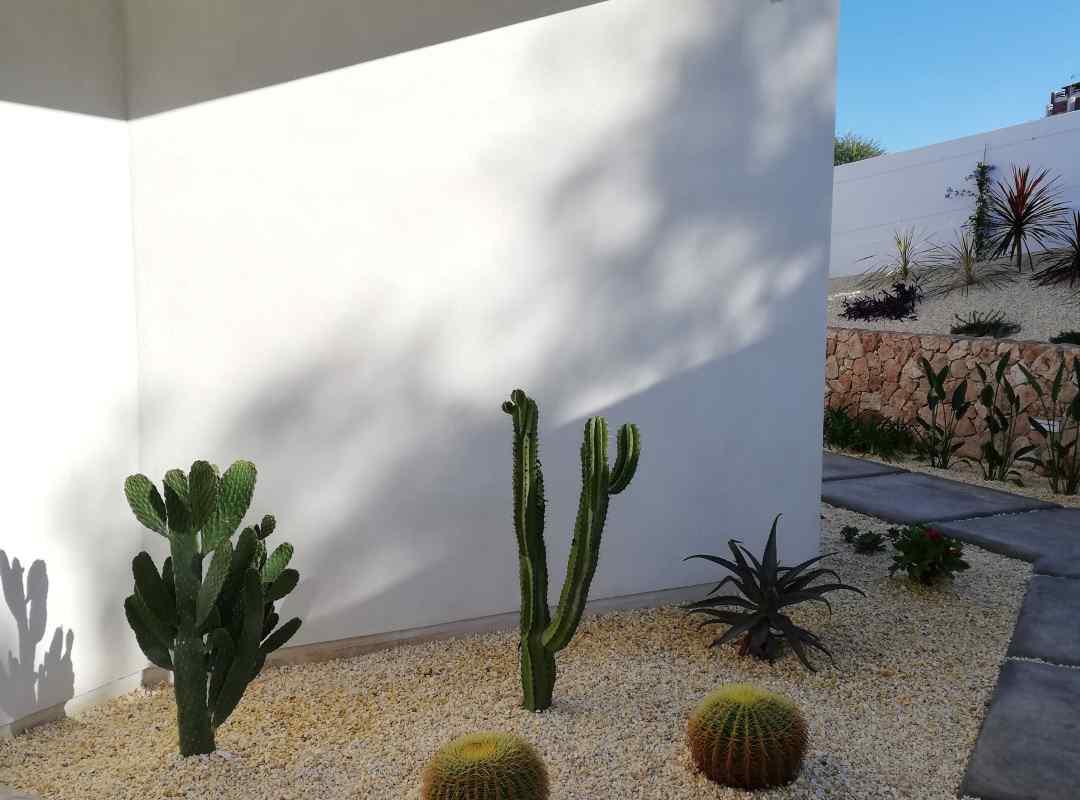 casa-antonia - IMG_20201202_140437 (arquitectura-sostenible)