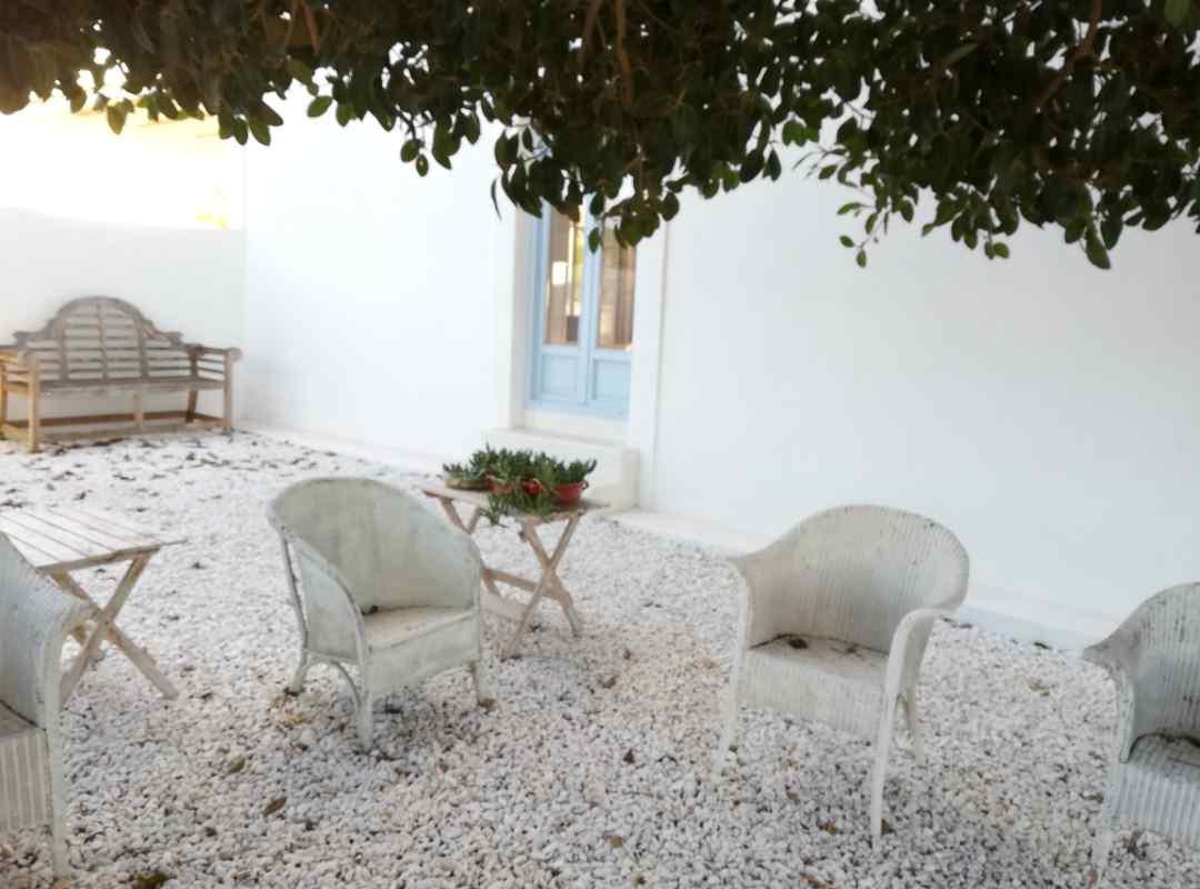 finca-blanca - IMG_20201208_170433 (arquitectura-sostenible)