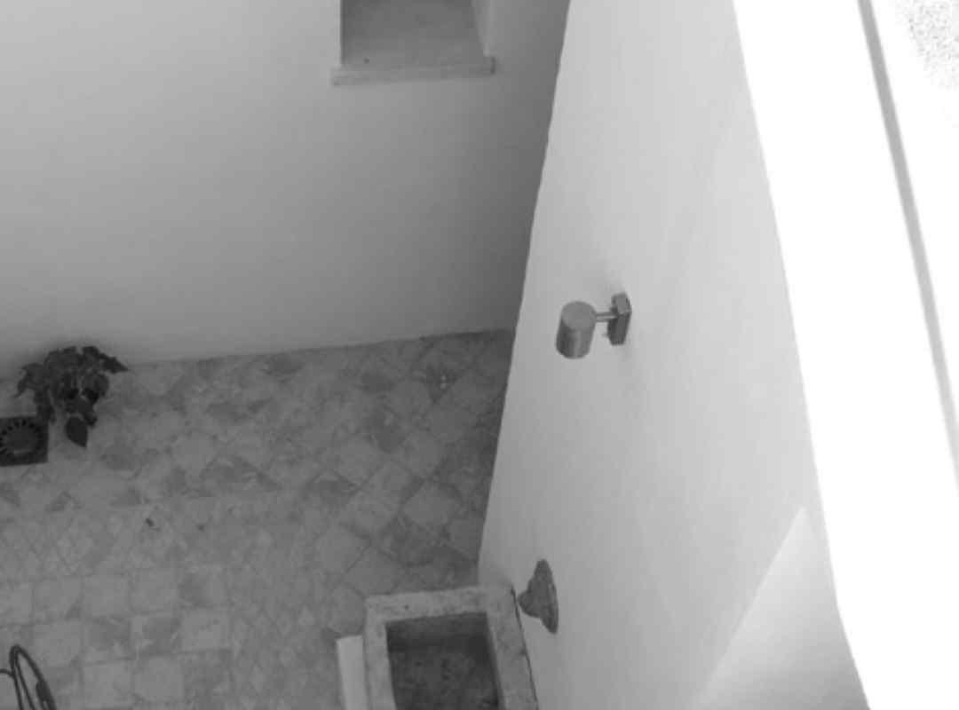 casa-maxwell - foto04 (arquitectura-sostenible)
